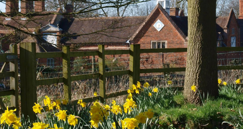 Is Easter the best time to put your house on the market? EDP Column by Nick Eley