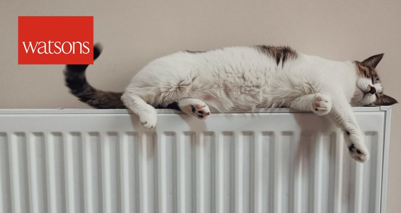 Government sets out plans for greener and warmer homes