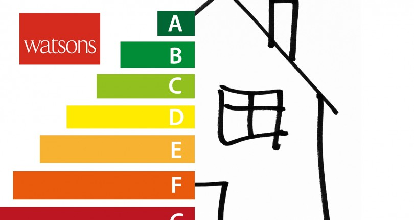 "Household energy efficiency plans will hit a ""roadblock"", say MPs"